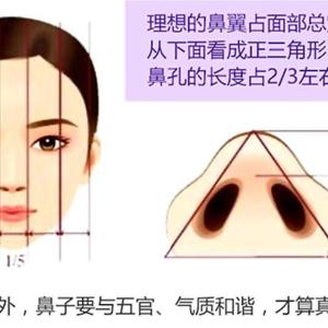 美鼻小测验,快来算算你的鼻子合格了么?