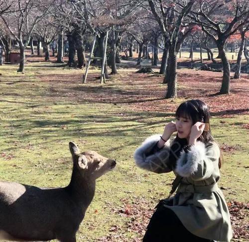 大家好,这段时间跟着男朋友一起去了日本旅游。看看男友帮我拍的吧,自从做了鼻子之后,侧面美的像个仙女。漂亮了,男友也是很...